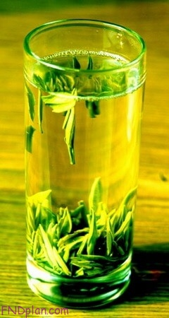 Uses-and-Facts-about-Green-Tea-benefits-2-fndplan.com